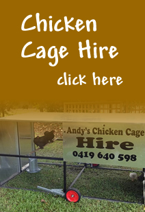 Chicken Feeders Australia