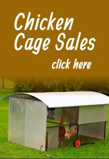 Chicken Feeders Australia